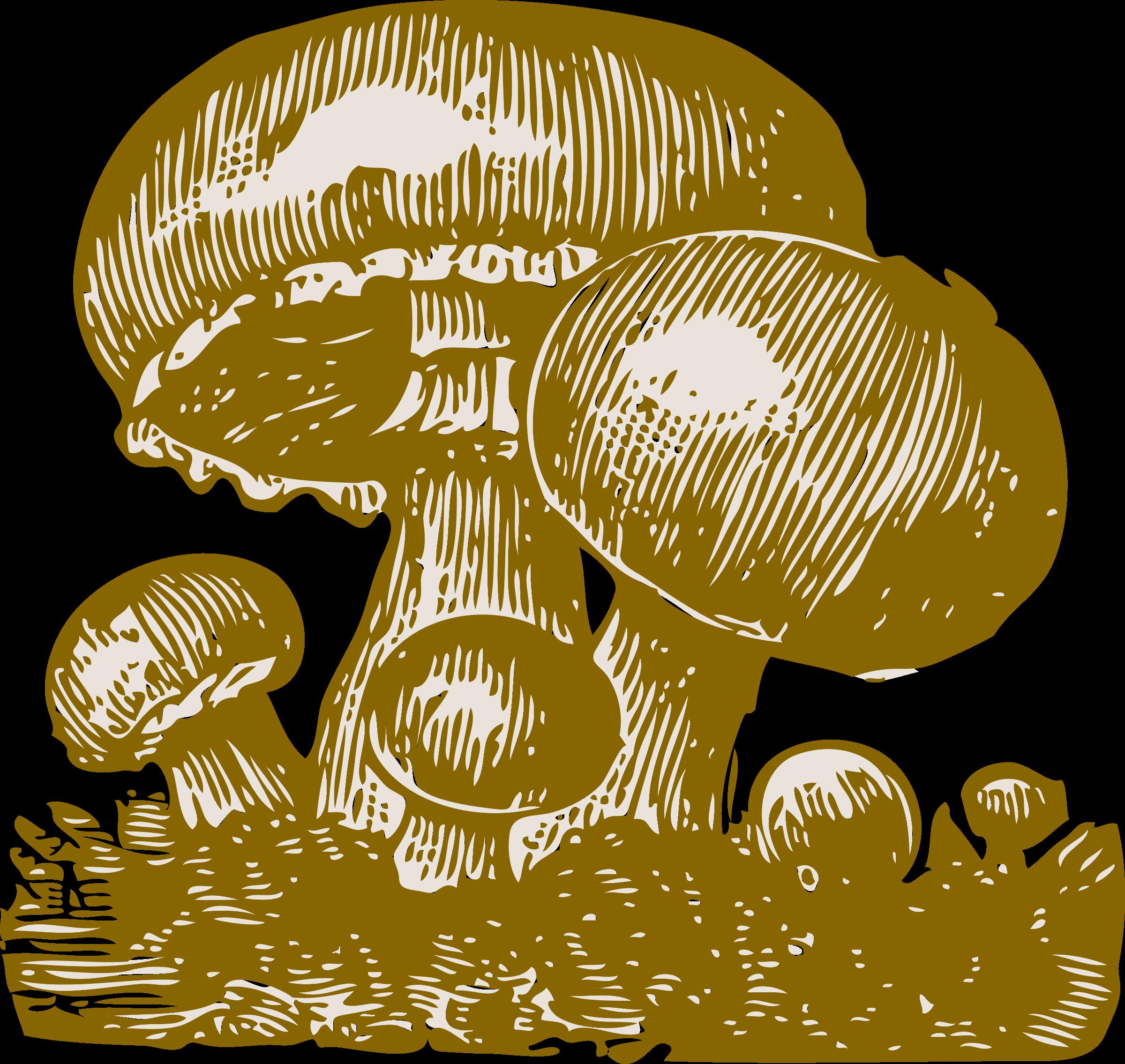 Big image png. Mushrooms clipart vintage