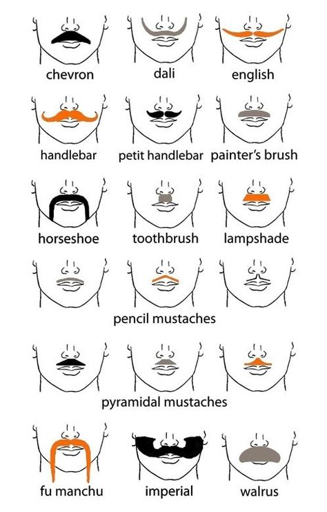 Types of mustaches styles. Mustache clipart different kind