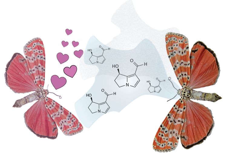 Casual fridays at chemical. Mystery clipart intuition