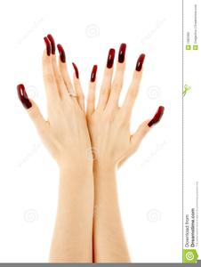 Nails clipart fake nail. Free images at clker