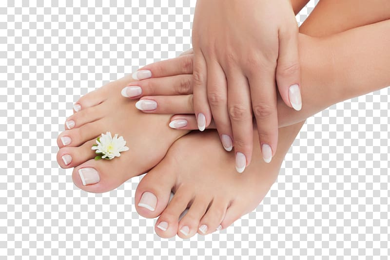White daisy flower on. Nail clipart human nail