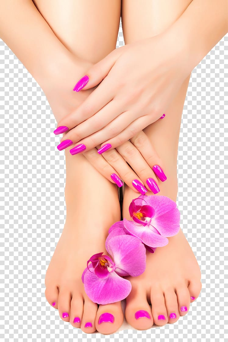 Pink rose and art. Nails clipart spa nail