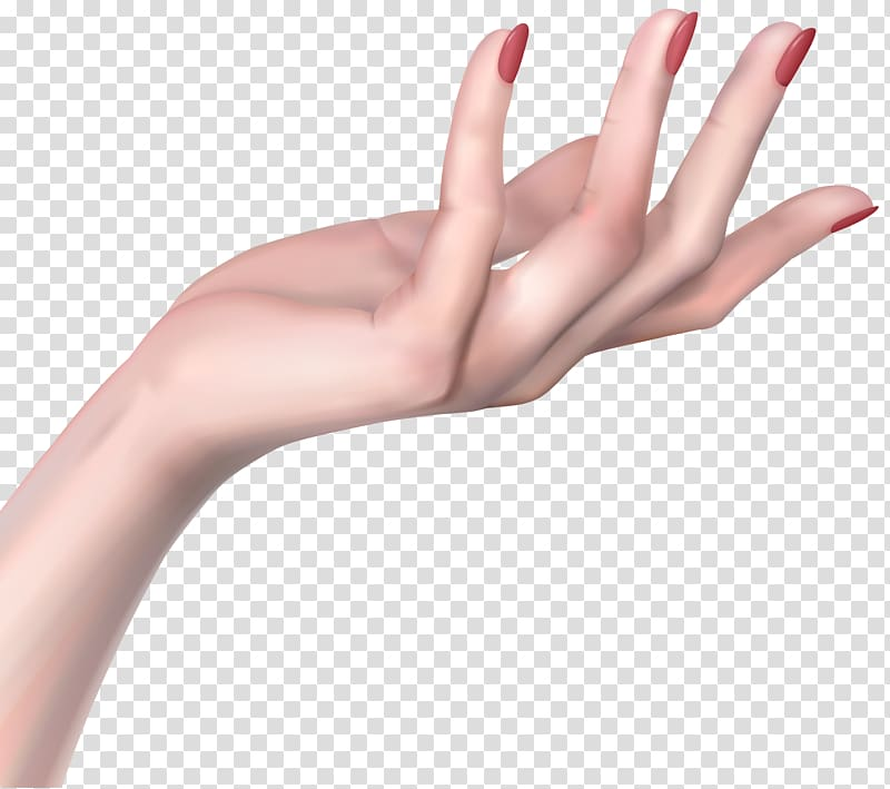 Woman hands transparent background. Nails clipart woman's hand