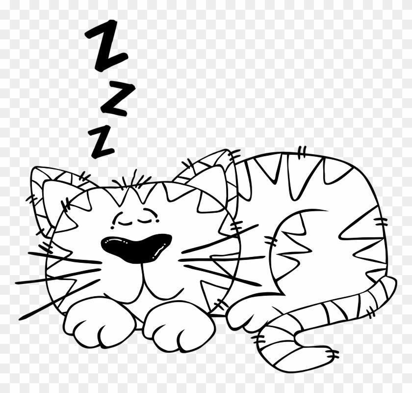 Nap clipart cute. Cat sleeping asleep cartoon