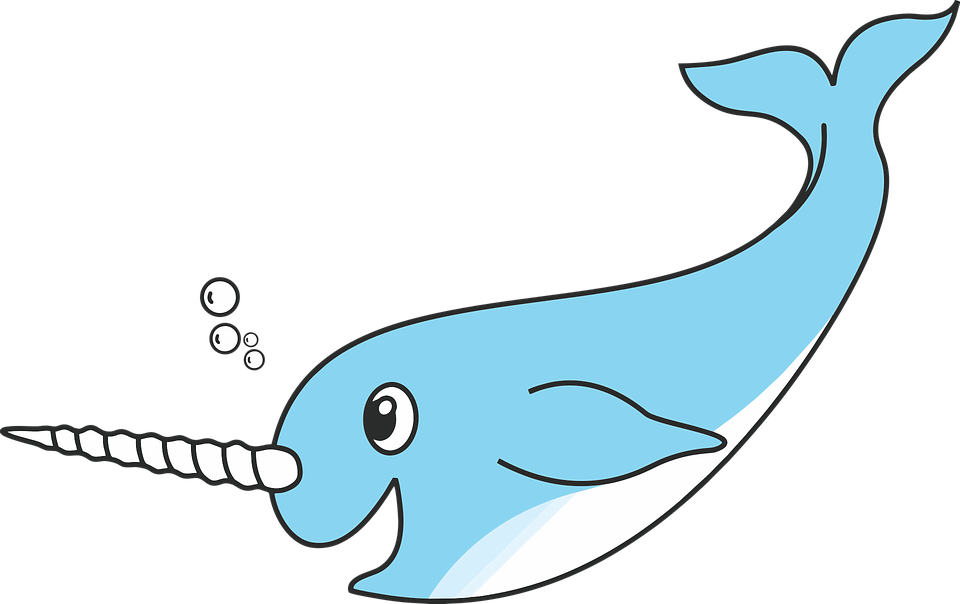 Narwhal clipart adorable, Narwhal adorable Transparent ...
