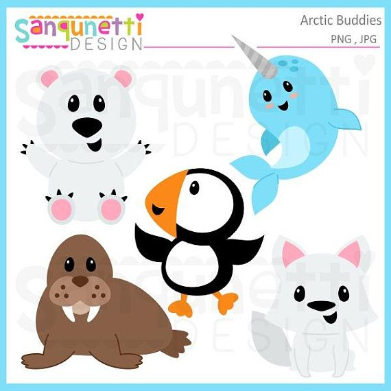 Arctic animals christmas winter. Narwhal clipart buddy the elf