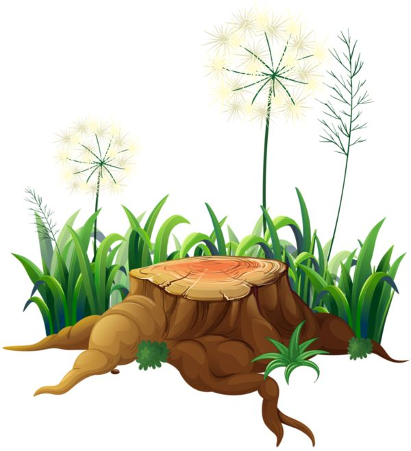 Nature clipart.  best images on