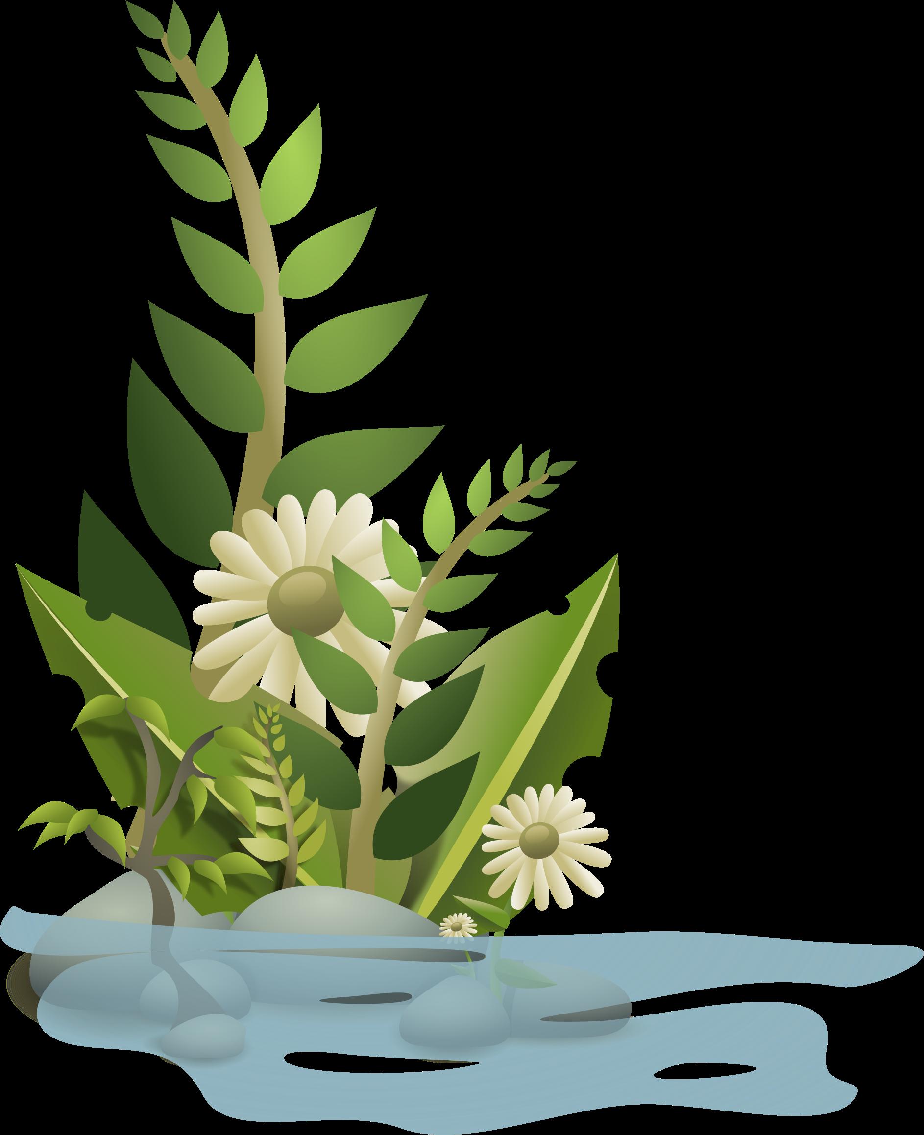 Nogloss big image png. Plants clipart gumamela