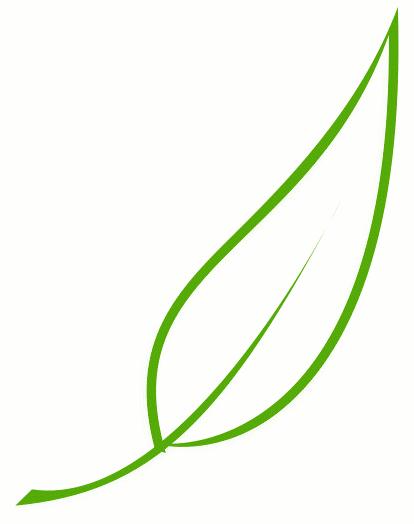 Nature clipart leaf. Free download clip art