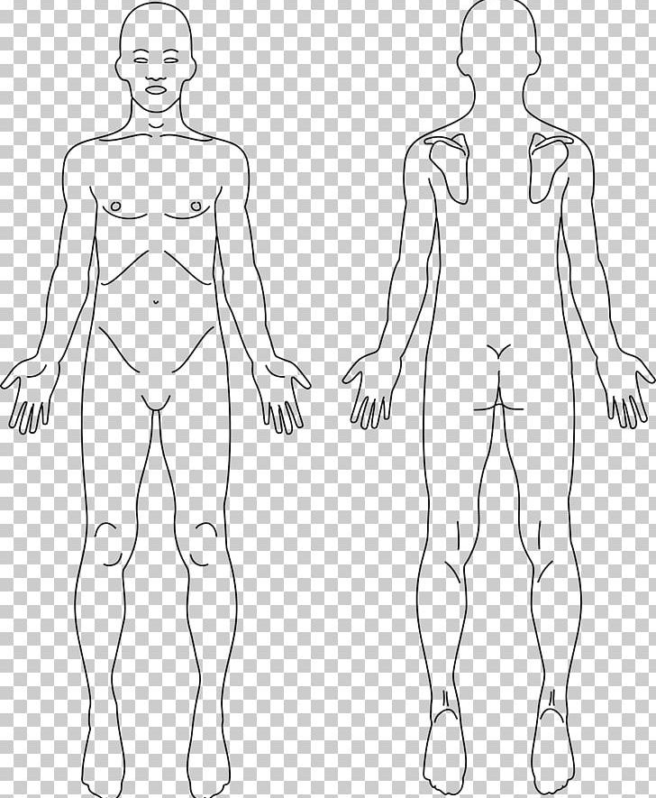 Download for free png. Neck clipart body back
