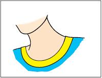 Neck clipart cartoon. Cliparts zone