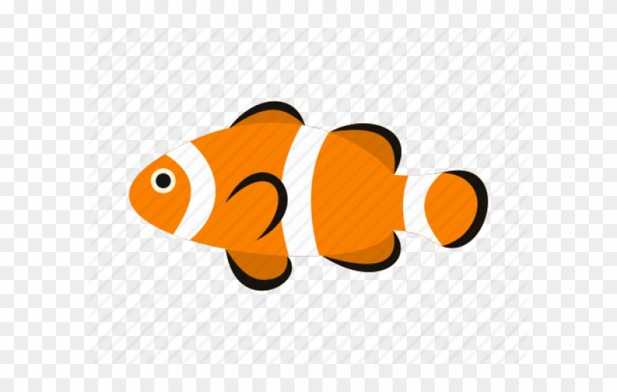 Nemo clipart clown fish. Clownfish underwater icon png