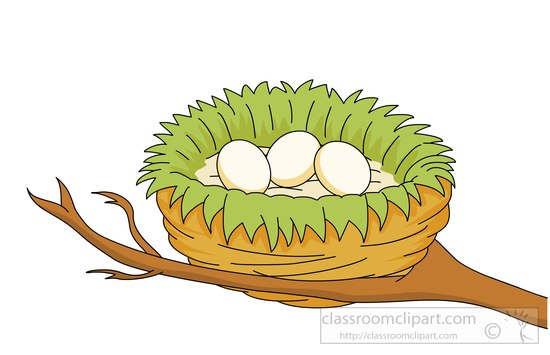 collection of images. Nest clipart