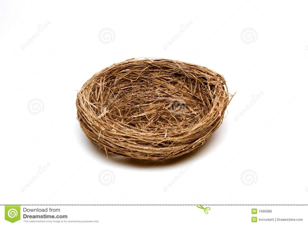 Nest clipart. Greatest free pictures of
