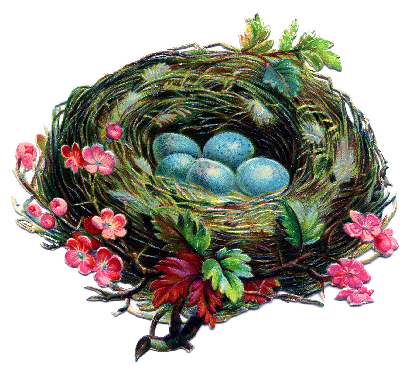 Vintage Clip Art - Pretty Nest with Blue Eggs - The Graphics Fairy