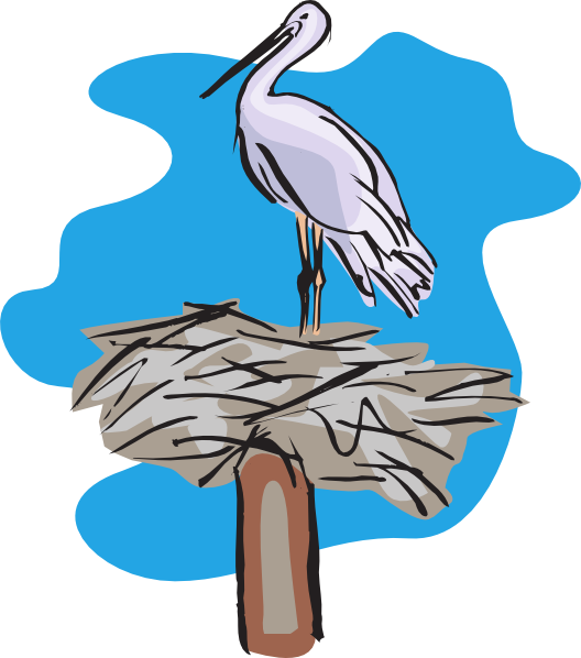 Standing on clip art. Nest clipart 4 bird