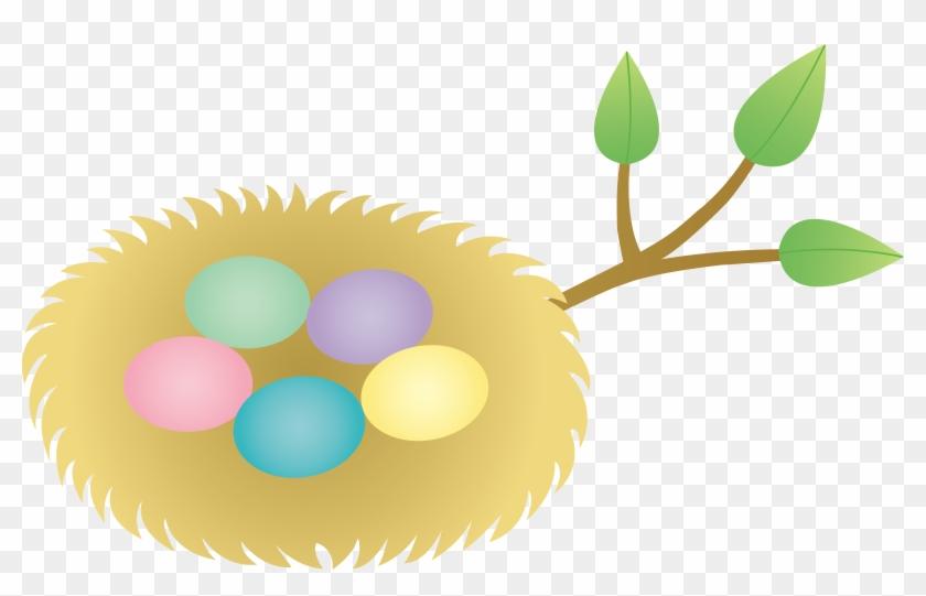 Bird s eggs in. Nest clipart 5 egg