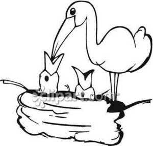 Nest clipart bird food. A feeding its babies