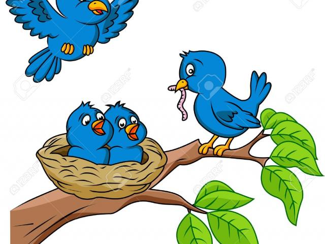 Nest clipart bird scene. Free birds download clip