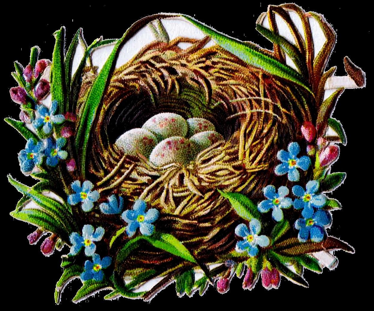 Free printable clip art. Nest clipart bird victorian