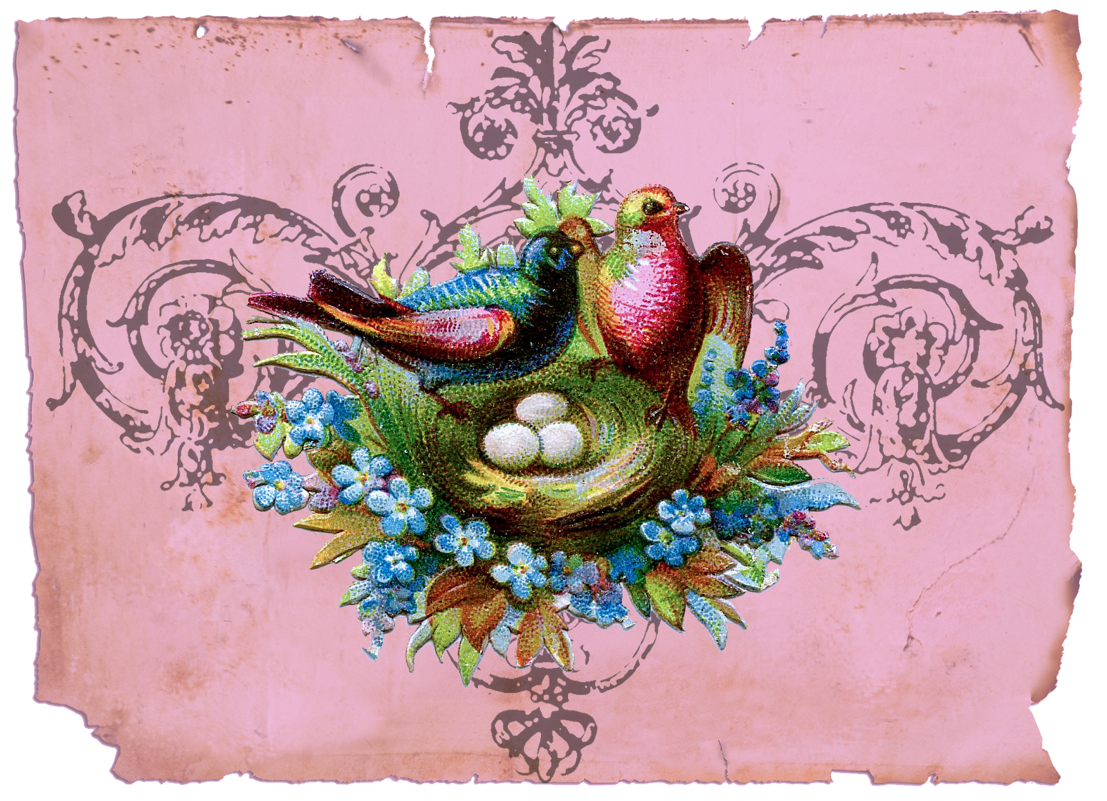 Nest clipart bird victorian. Google image result for
