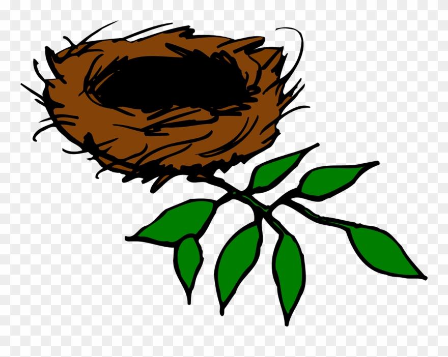 Nest clipart bird's nest. Bird s in tree