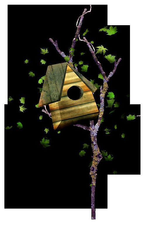 Nest clipart branch clipart. Box animation clip art