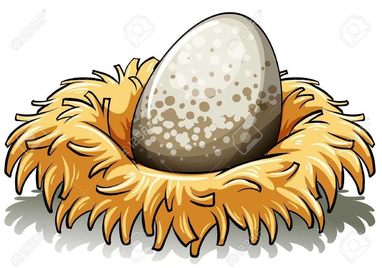 Nest clipart cartoon. Suddenly birds bird stock