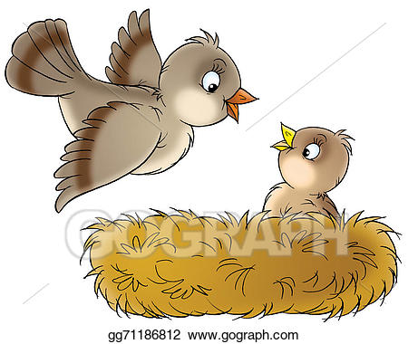 Stock illustration drawing gg. Nest clipart drawn bird