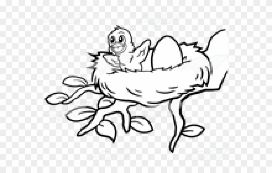 Birds mama line art. Nest clipart drawn bird