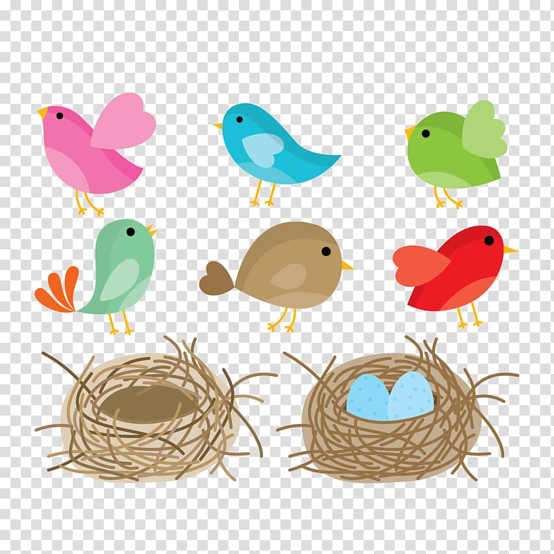Nest clipart drawn bird. Drawing birds transparent background