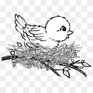 Free png download bird. Nest clipart easy