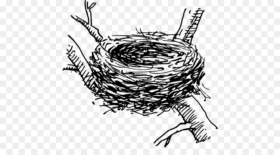 Bird head transparent . Nest clipart line drawing