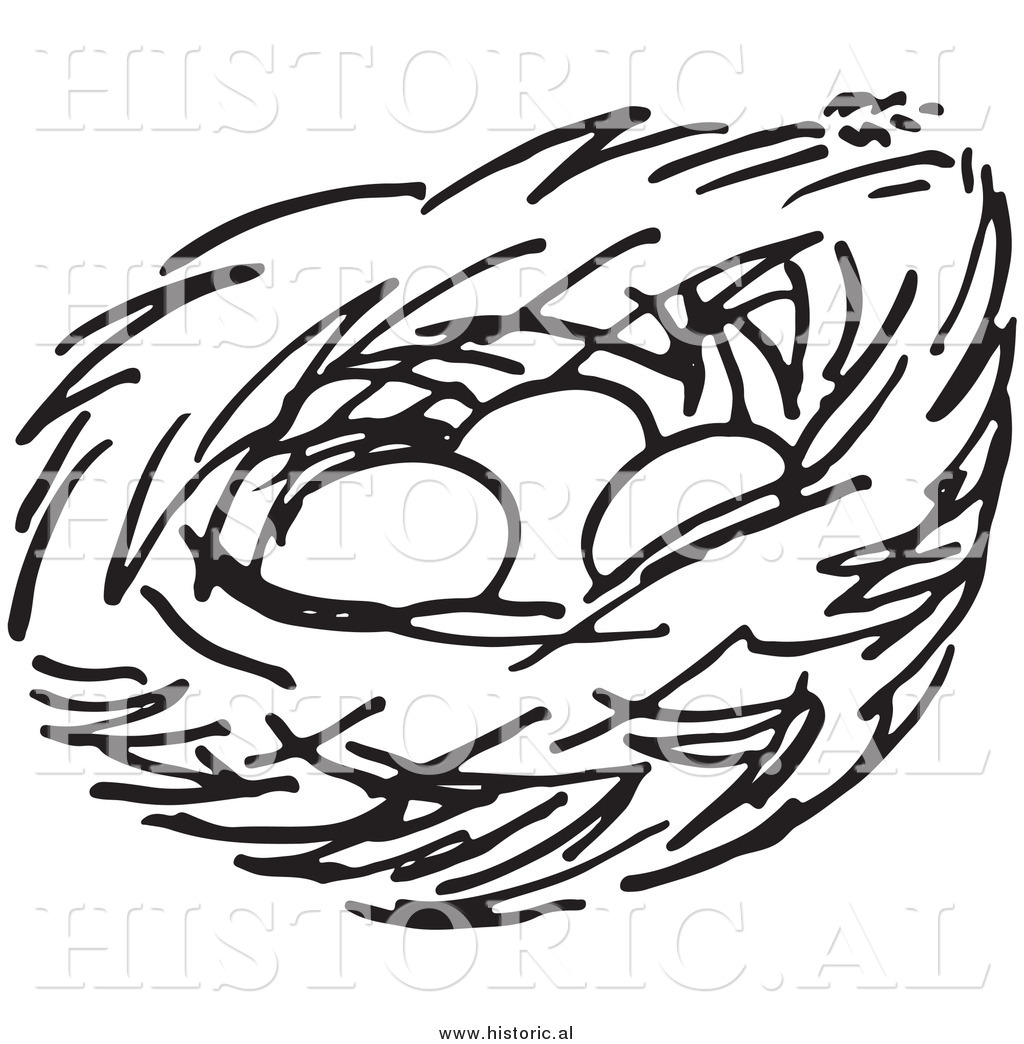 Bird black and white. Nest clipart line drawing