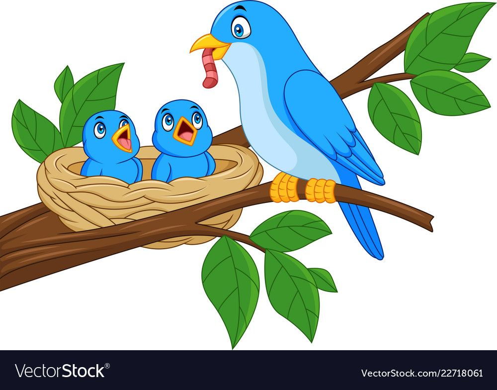 Nest clipart mother bird. Pin by lili on