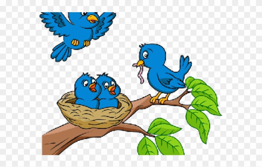 Nest clipart nesting. Cartoon picture birds in