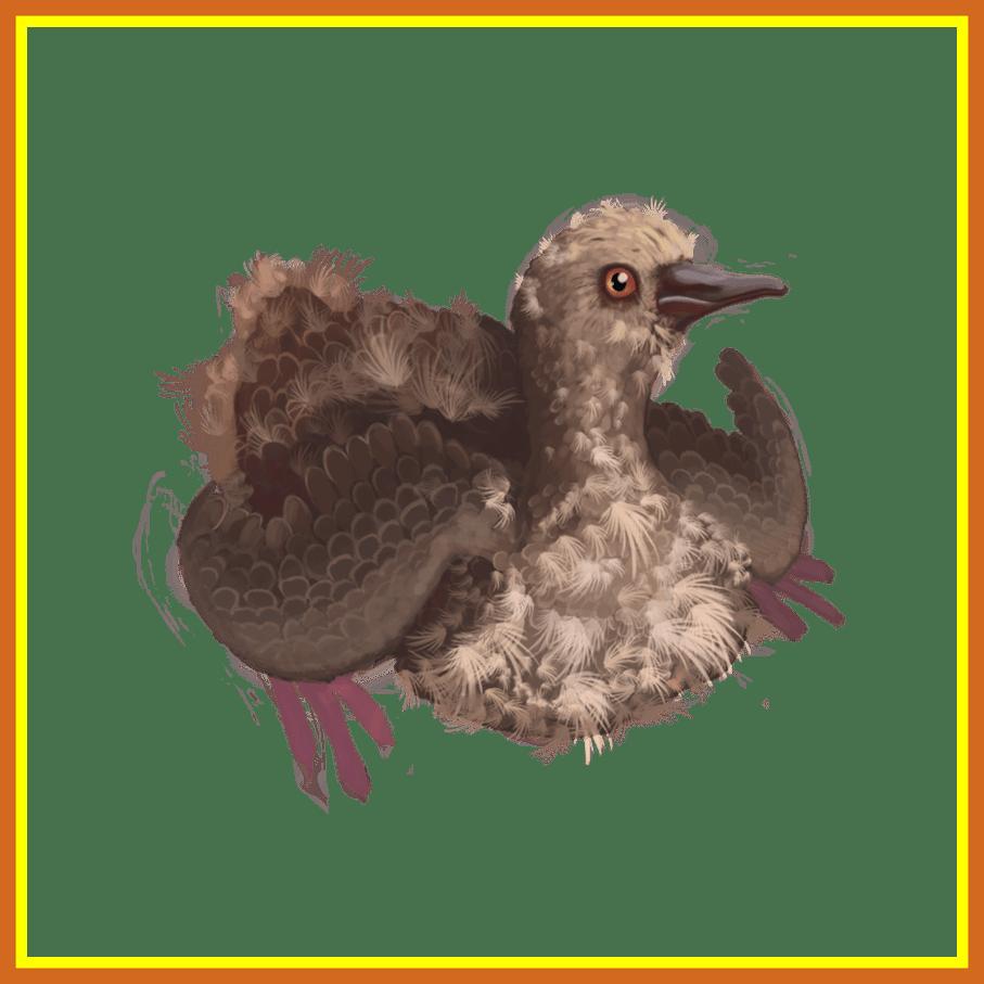Nest clipart pigeon nest. Marvelous passenger squab by