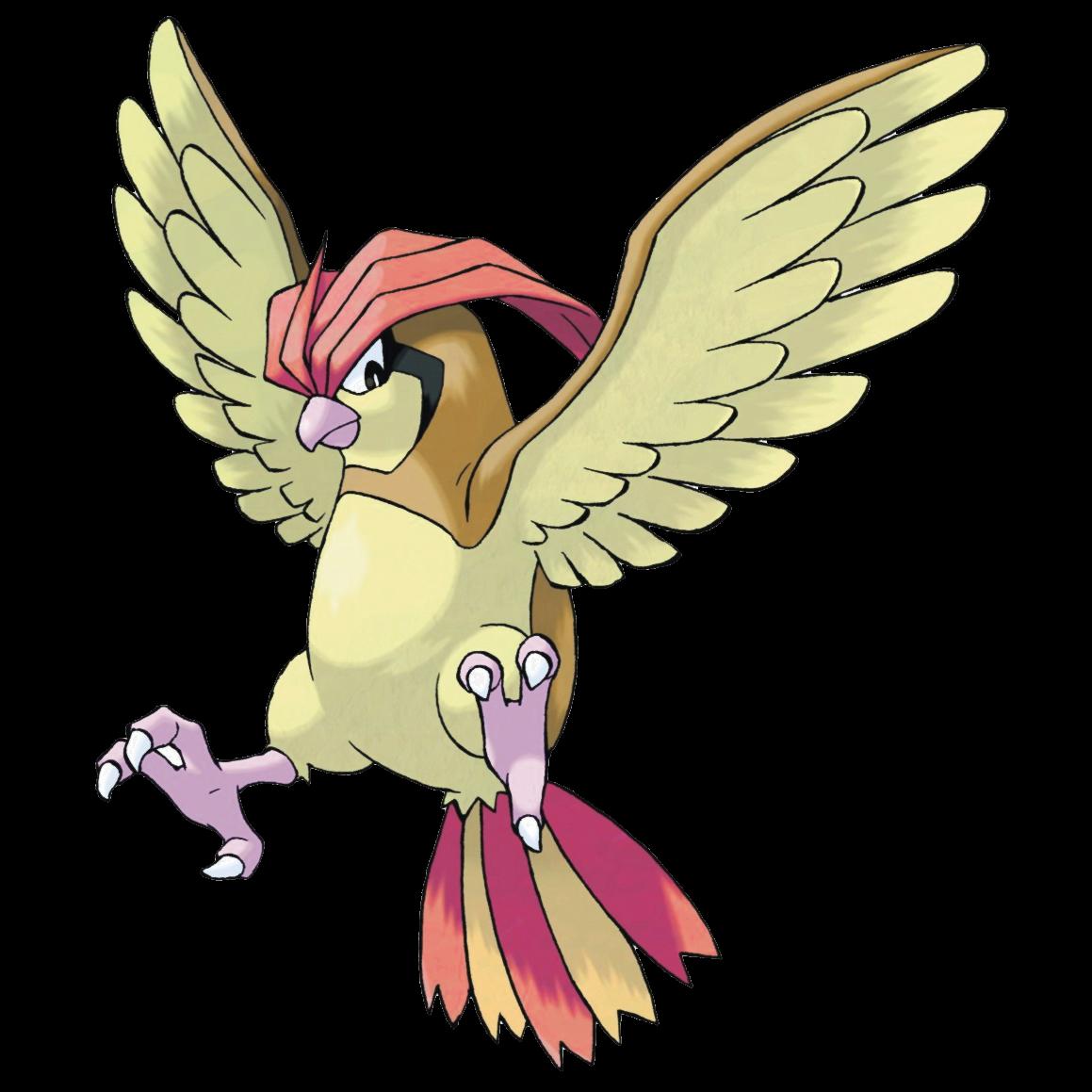 Pidgeotto video games fanon. Nest clipart pigeon nest