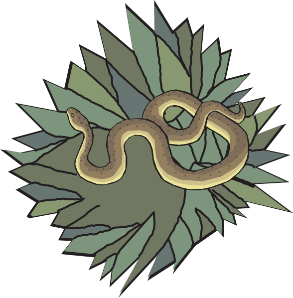 Snake In Nest Clip Art at Clker