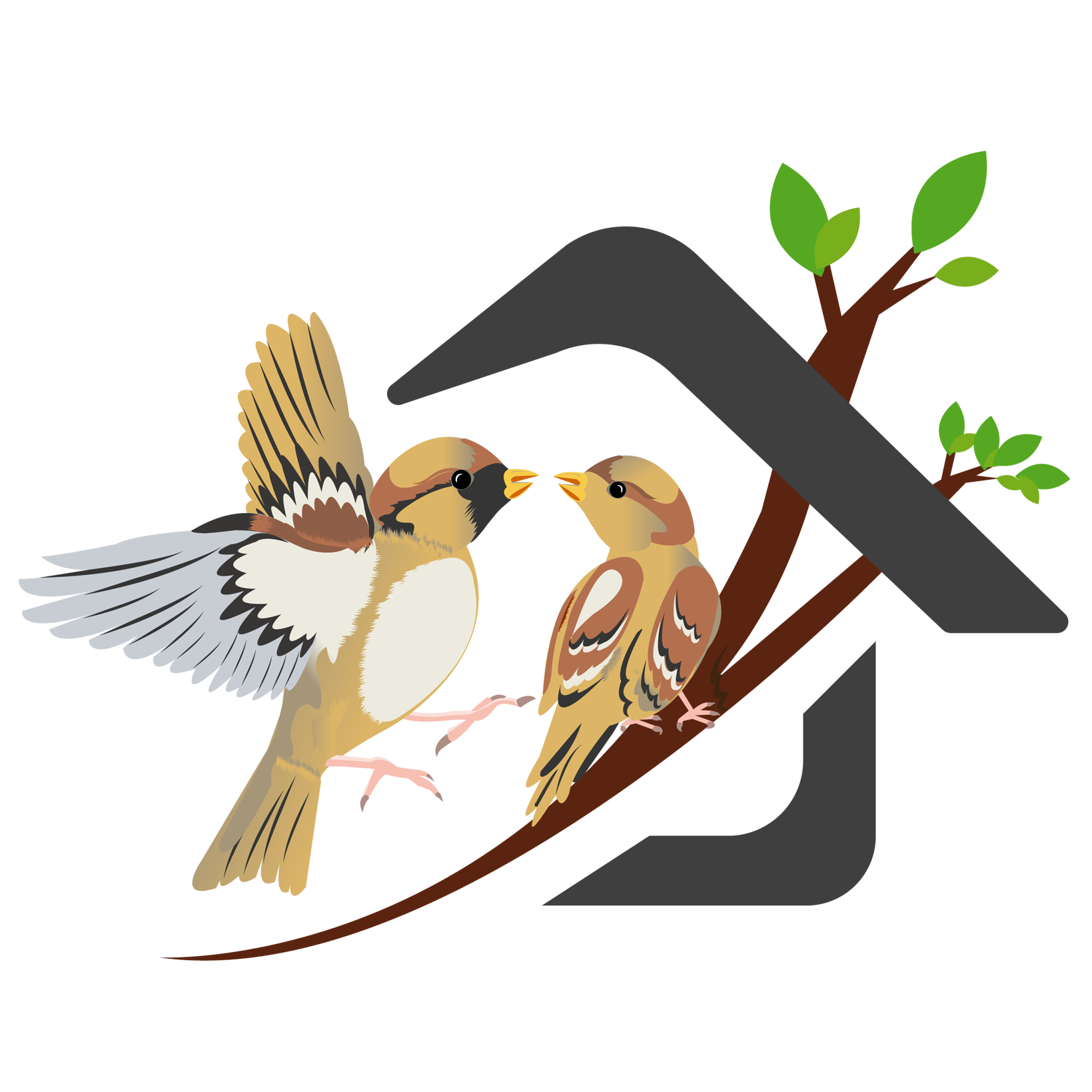 Nest clipart sparrow nest. Singing sparrows can we