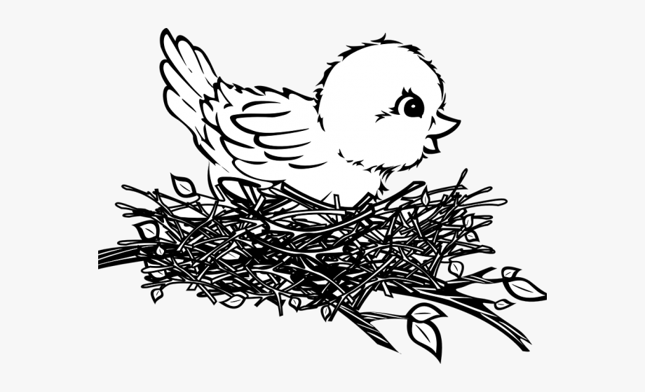 Nest clipart sparrow nest. Bird in black and
