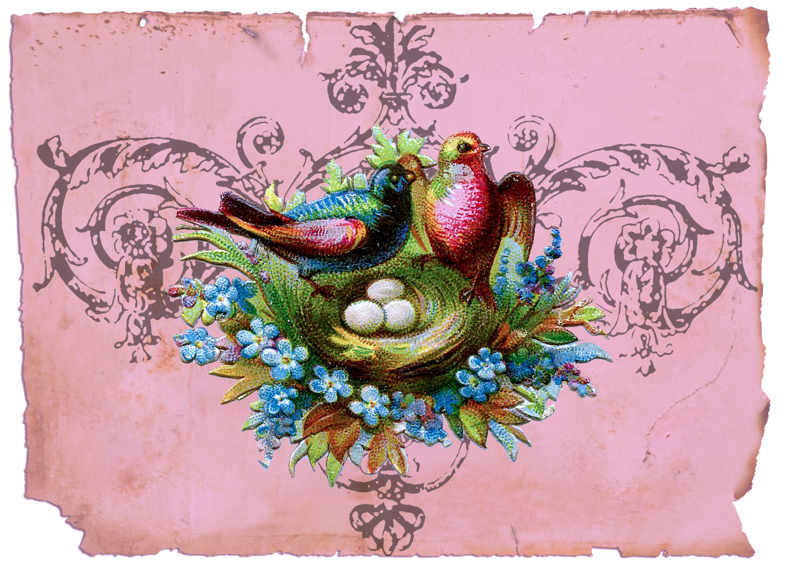 Nest clipart vintage bird. The goose birds in