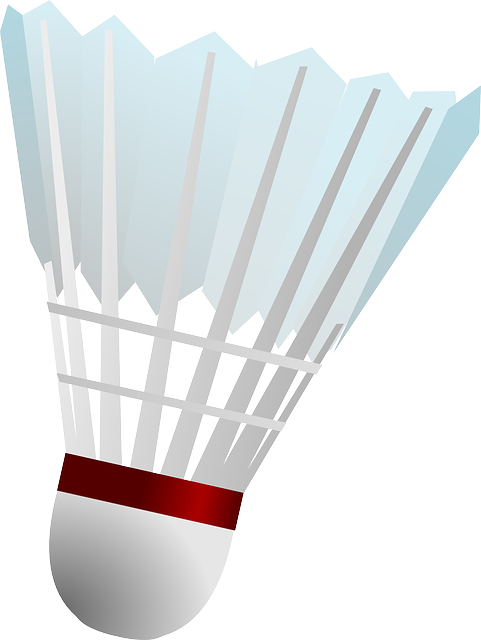 Badminton clipart shuttlecock. Free image on pixabay