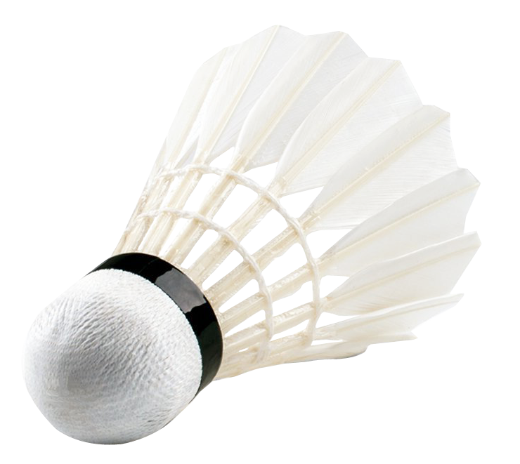 Shuttlecock png transparent image. Net clipart badminton equipment