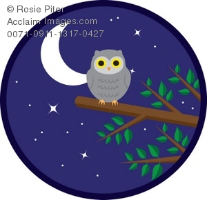 Illustration of an owl. Night clipart