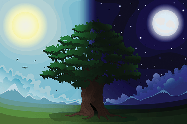 Night clipart night landscape. Day and pbs learningmedia