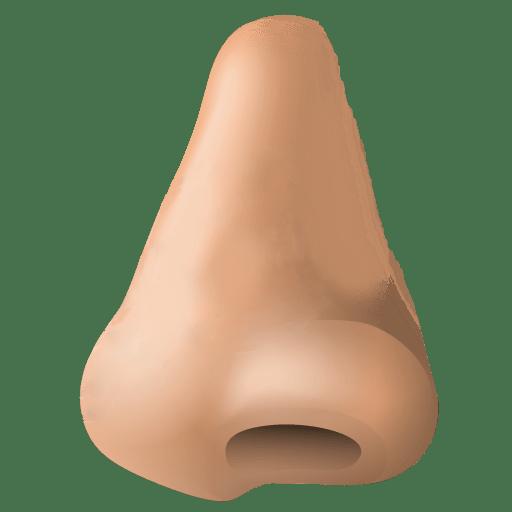 Nose clipart. Human transparent png stickpng