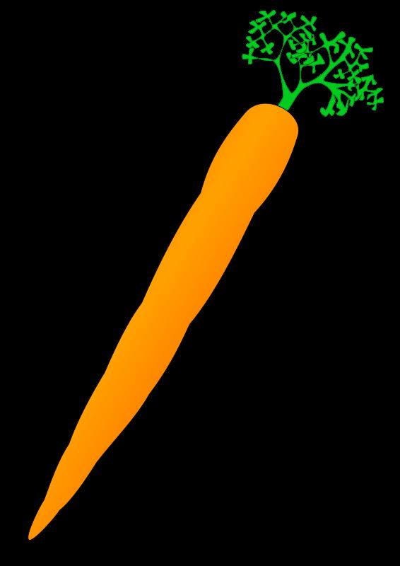 Panda free images carrotclipart. Nose clipart carrot