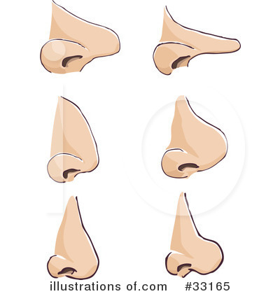 Nose clipart pointy nose. Clipartion com