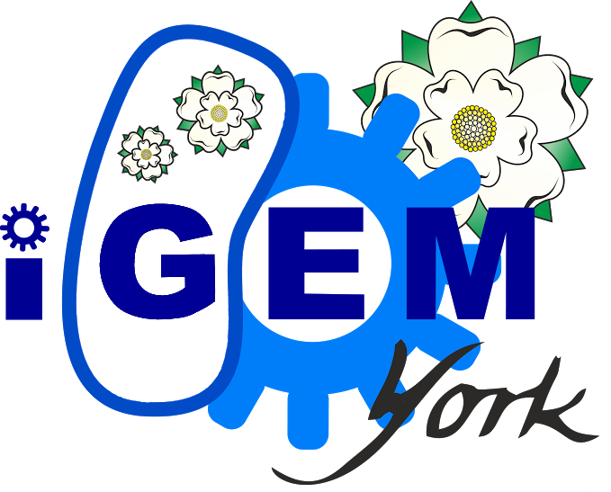 Notebook clipart contents page. Team york igem org